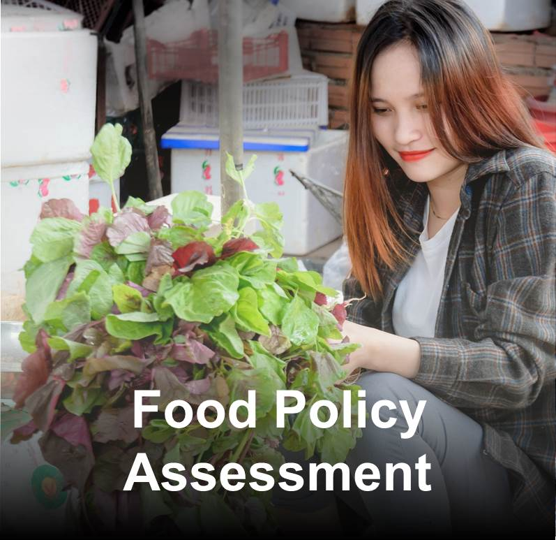 Food Policy Assessment