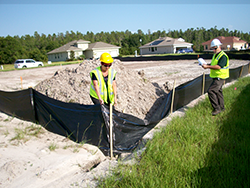 Picture of Workers Inspecting a Site