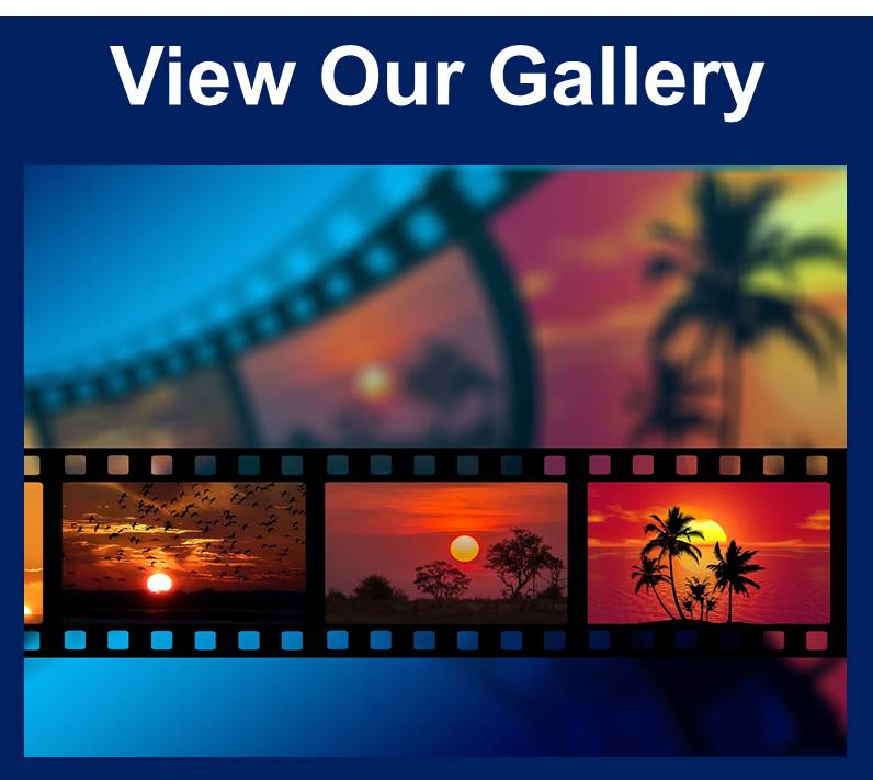 View Our Gallery