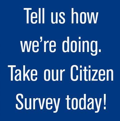 CitizenSurvey_Spotlight