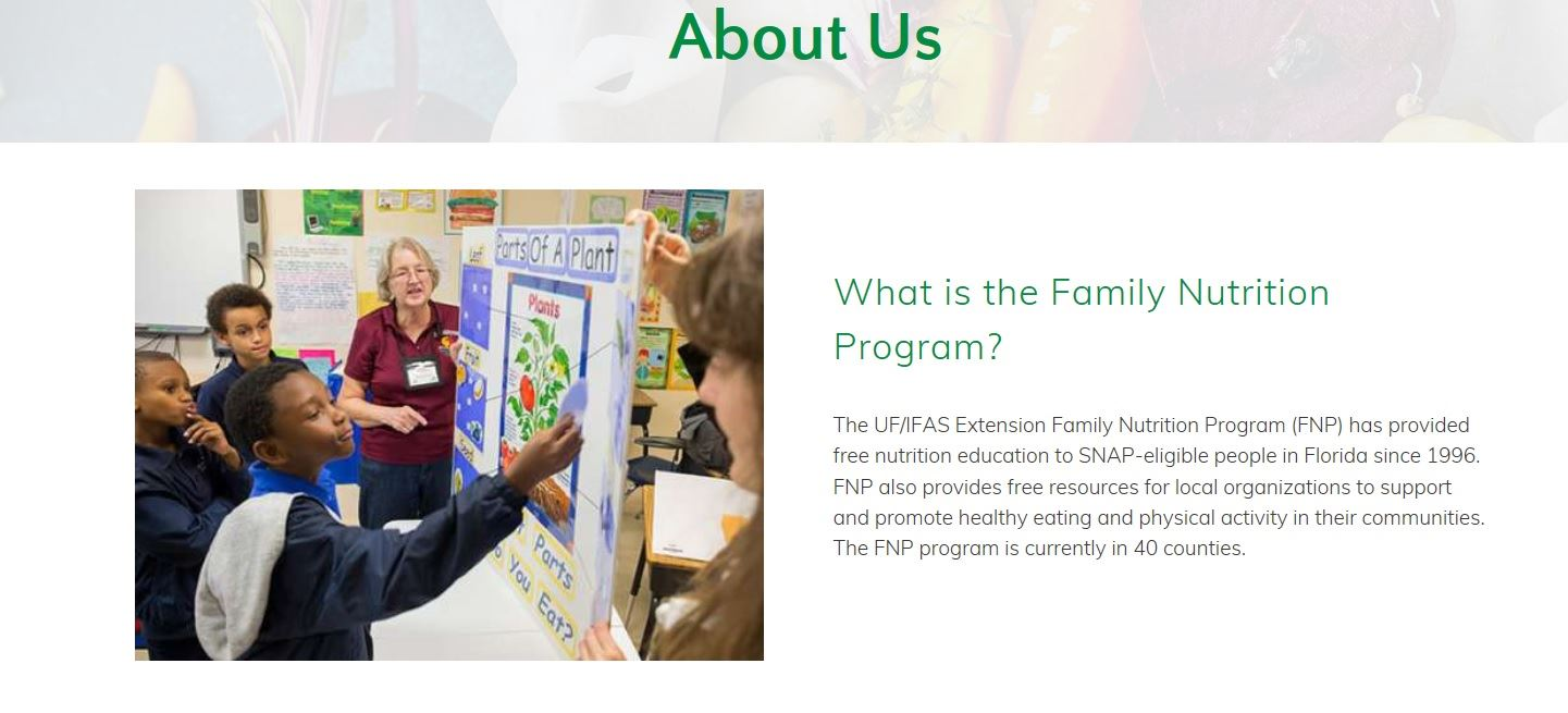 FNP Art Page Intro Image  About Us