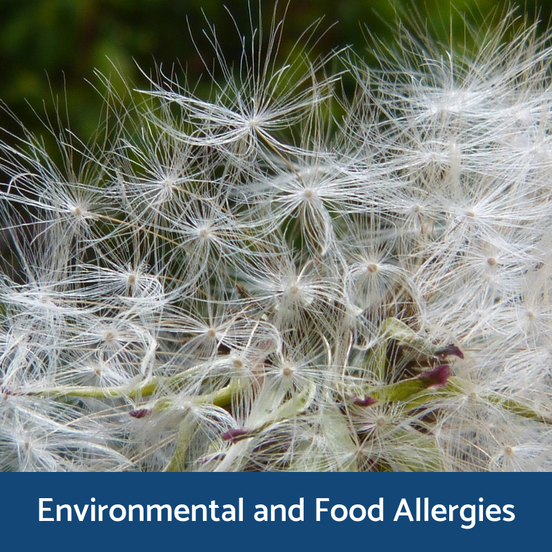 Environment and food pet allergy information