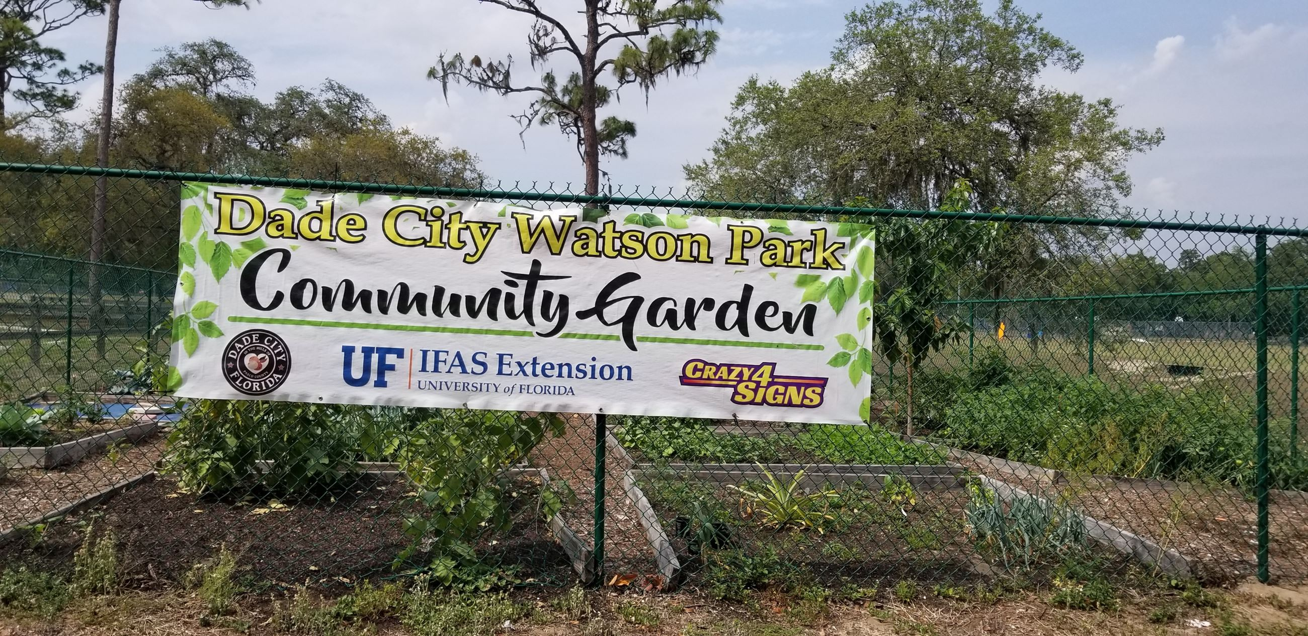 Watson Park Community Garden Photo