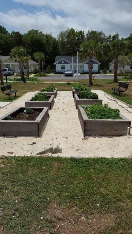 Hilltop Landings Community Garden - Dade City